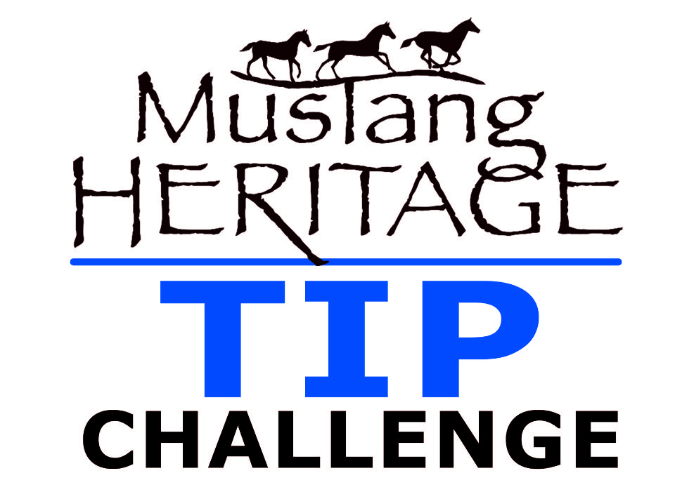 Mustang Heritage TIP Challenge Sponsored by B Gone White Line Treatment